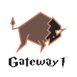 Gateway Woodbeater Wellington Boots (Green)